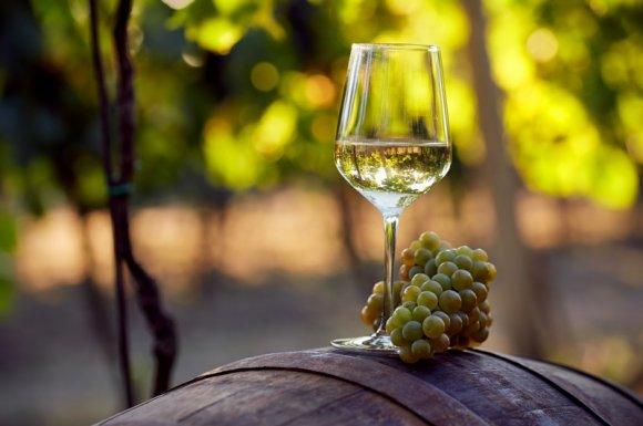 Caviste pour le vente de vin blanc pour une cérémonie de mariage Rumilly